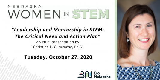 Leadership and Mentorship in STEM: The Critical Need and Action Plan